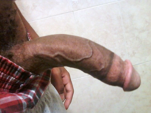 Worlds Largest Penis Picture