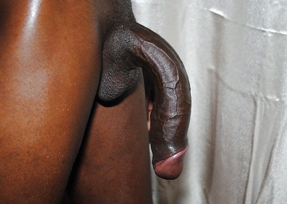 Long Big Black Dicks