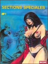 BDSM comics `The Special Section`, part 1