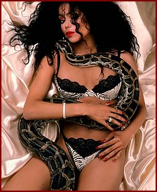Sexy ebony babes with snakes