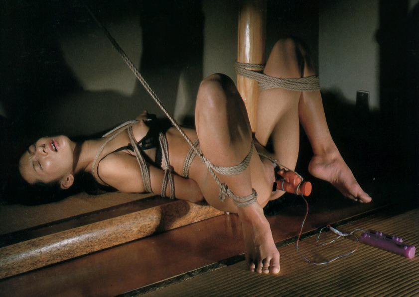 Japan shibari bondage art