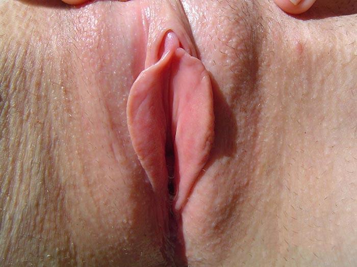 фото большых половых губ